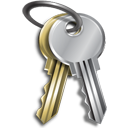 Password keys icon