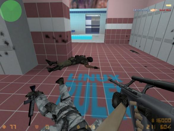 Counterstrike screenshot