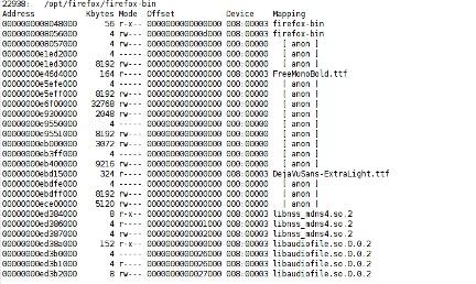 pmap command output